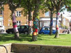 Knitted tree art at Hunstanton