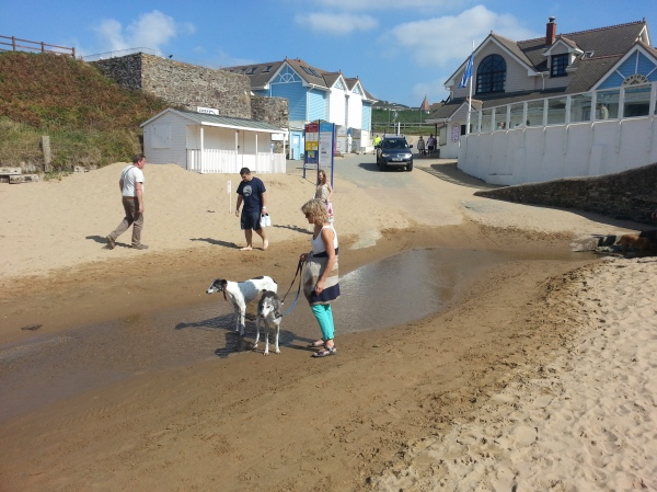 Dog-friendly section of the beach, near Woolacombe Golf Club