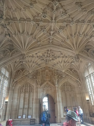 Vaulted ceiling, School of Divinity, Oxford