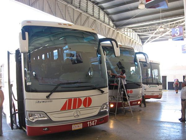 ADO bus (Wikipedia image)