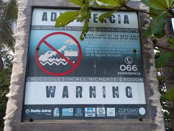 Right next to our bus stop, a warning sign about crocodiles...