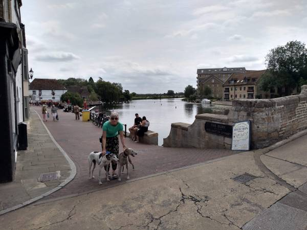 By the Medieval Bridge over the River Great Ouse at St Ives