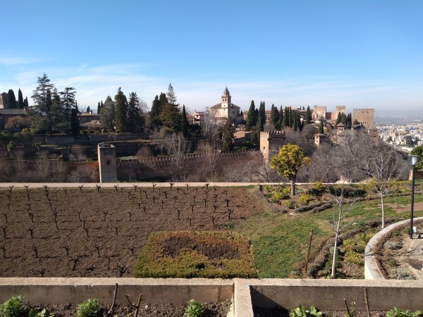 The Alhambra from the Generalife Gardens